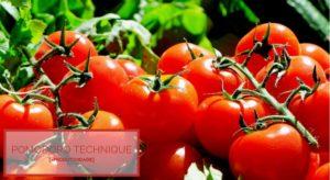 Pomodoro – Como aumentar sua produtividade