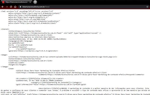 Feed RSS do meu site - Dicas Para Usar O WordPress No Feed Da Skill De Resumo De Notícias-03