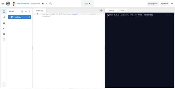 Tela inicial do projeto - Seu Primeiro Programa Python